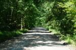 Zakończono przebudowę drogi powiatowej Radzyń-Józefów