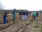 Uczniowie SOSW zasadzili drzewka