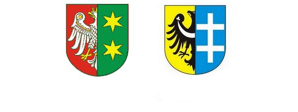 Remonty dróg wojewódzkich na terenie Powiatu Wschowskiego