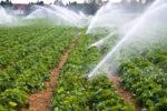 Dotacje na inwestycje w nawadnianie gospodarstw